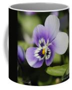 Viola Named Sorbet Marina Baby Face Coffee Mug