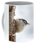 White-breasted Nuthatch Coffee Mug