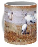 Wood Storks Coffee Mug