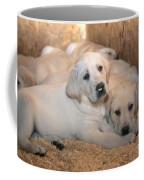 Yellow Labrador Retriever Puppies Coffee Mug