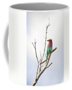 African Birds Coffee Mug