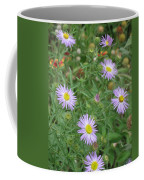 6 Asters Left Coffee Mug