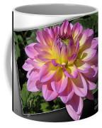 Dahlia Named Jowey Gipsy Coffee Mug