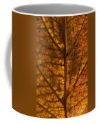 Dogwood Leaf Backlit Coffee Mug