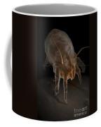 Dust Mite Coffee Mug