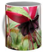 Fuchsia Named Roesse Blacky Coffee Mug