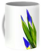 Iris Coffee Mug