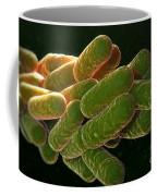 Legionella Pneumophila Bacteria Coffee Mug