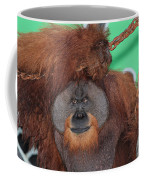Portrait Of A Large Male Orangutan Coffee Mug