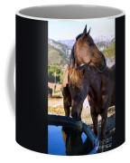 Rancho Oso - California Coffee Mug