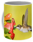 Ruby-throated Hummingbird Female Coffee Mug