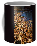 Ussurian Taiga Autumn Coffee Mug