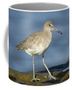 Willet Coffee Mug
