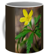 Yellow Wood Anemone Coffee Mug