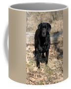 Black Labrador Retriever Coffee Mug