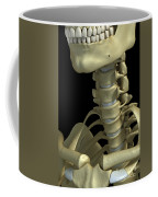 Bones Of The Neck Coffee Mug