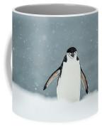 Chinstrap Penguin  Pygoscelis Coffee Mug