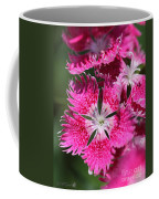Dianthus Cross Coffee Mug