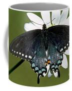 Eastern Black Swallowtail Coffee Mug