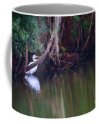 Great White Heron At Waters Edge Coffee Mug