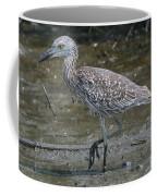 Yellow -crowned Night Heron Coffee Mug