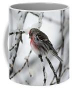 Common Redpoll Coffee Mug