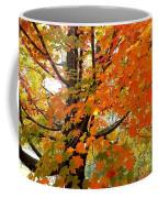Fall Explosion Of Color Coffee Mug