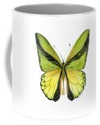 8 Goliath Birdwing Butterfly Coffee Mug