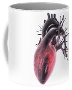 Heart Anatomy Coffee Mug