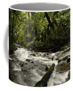 Jungle Stream Coffee Mug
