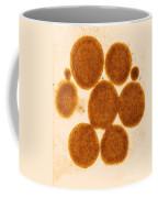 Lipid Droplets Tem Coffee Mug