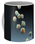 Lymphocytes Undergoing Apoptosis, Sem Coffee Mug