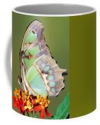Malachite Butterfly Coffee Mug