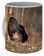 Male Eastern Wild Turkey Coffee Mug