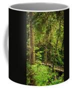 Path In Temperate Rainforest Coffee Mug by Elena Elisseeva