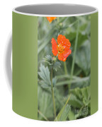 Scarlet Avens Orange Wild Flower Coffee Mug
