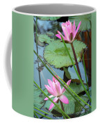 Pink Water Lily Pond Coffee Mug