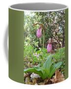 #800 D405 Lady Slipper Coffee Mug