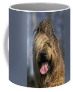 Briard Dog Coffee Mug