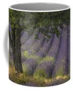 Lavender Field, France Coffee Mug