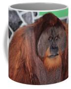 Portrait Of A Large Male Orangutan Coffee Mug