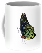 97 Perched Kuranda Butterfly Coffee Mug by Amy Kirkpatrick
