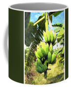 A Banana Field In Late Afternoon Sunlight With Sky And Clouds Coffee Mug