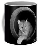 A Barrel Of Fun Coffee Mug