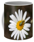 A Beattle On A Daisy Coffee Mug