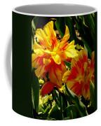 A Beautiful Fire Coffee Mug