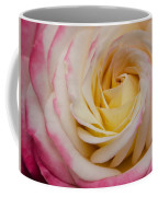 A Beautiful Pink Rose In Summertime Coffee Mug