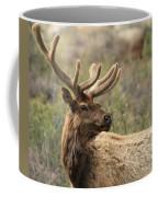 A Beautiful Young Rack Coffee Mug