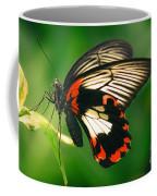A Beauty Coffee Mug