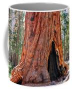 A Big Tree Coffee Mug